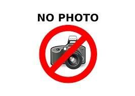 inlocuire camera allview p6 emagica