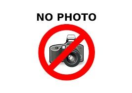 inlocuire camera foto spate principala allview p6 energy mini